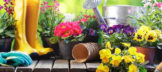 Cultiver un jardin